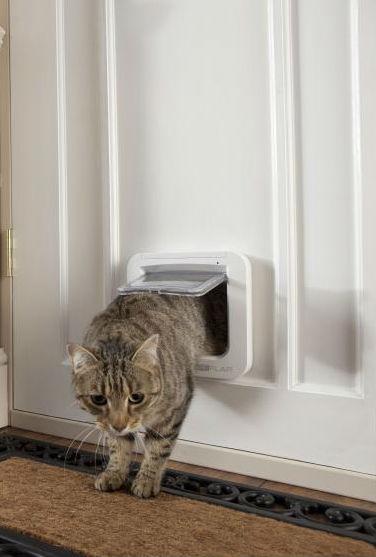 Дверка для домашних животных